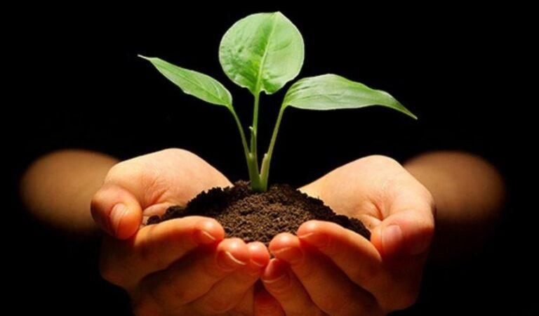 Etika Terhadap Lingkungan Hidup